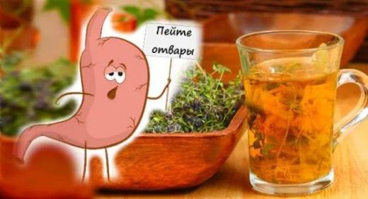 Как лечить желудок народными средствами-рецепты