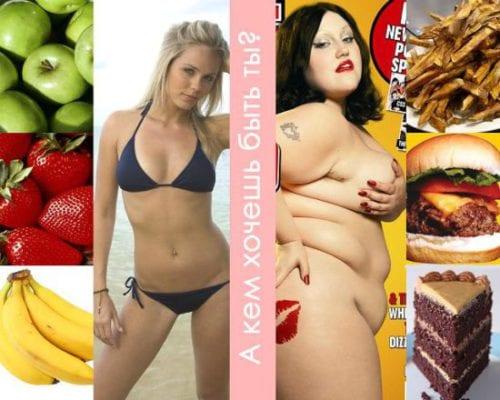 худая и толстая