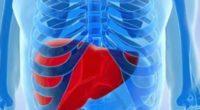 Несколько симптомов жировой болезни печени