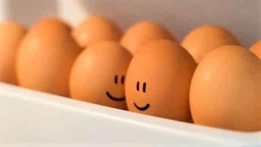 Можно ли есть яйца при похудении?