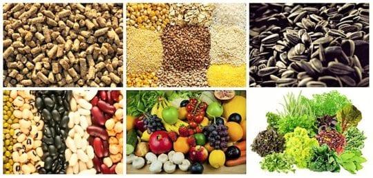 фрукты, овощи, бобы, отруби