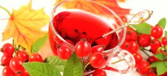 ягоды шиповника и рябины