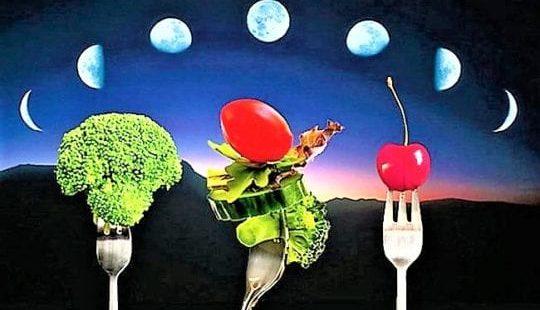 Основные правила лунной диеты для похудения