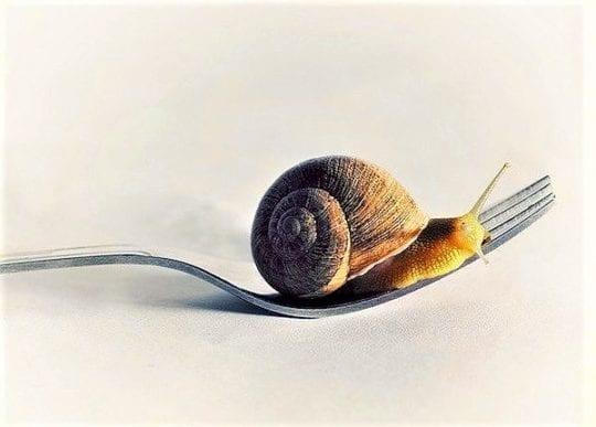 медленно кушать