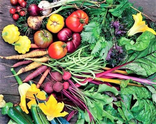овощи – основа рациона