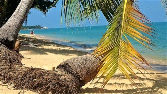 пляж Маенам Самуи 2