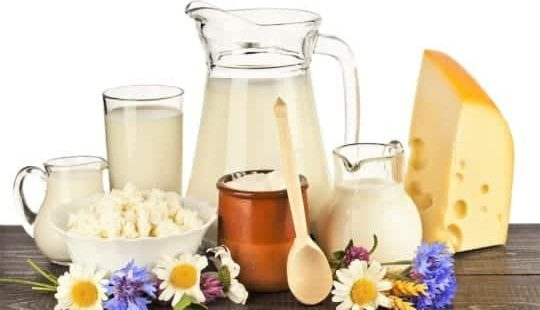 Молоко и молочные продукты: вред или польза?